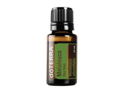 Ätherische Öle: Melaleuca (Teebaum)