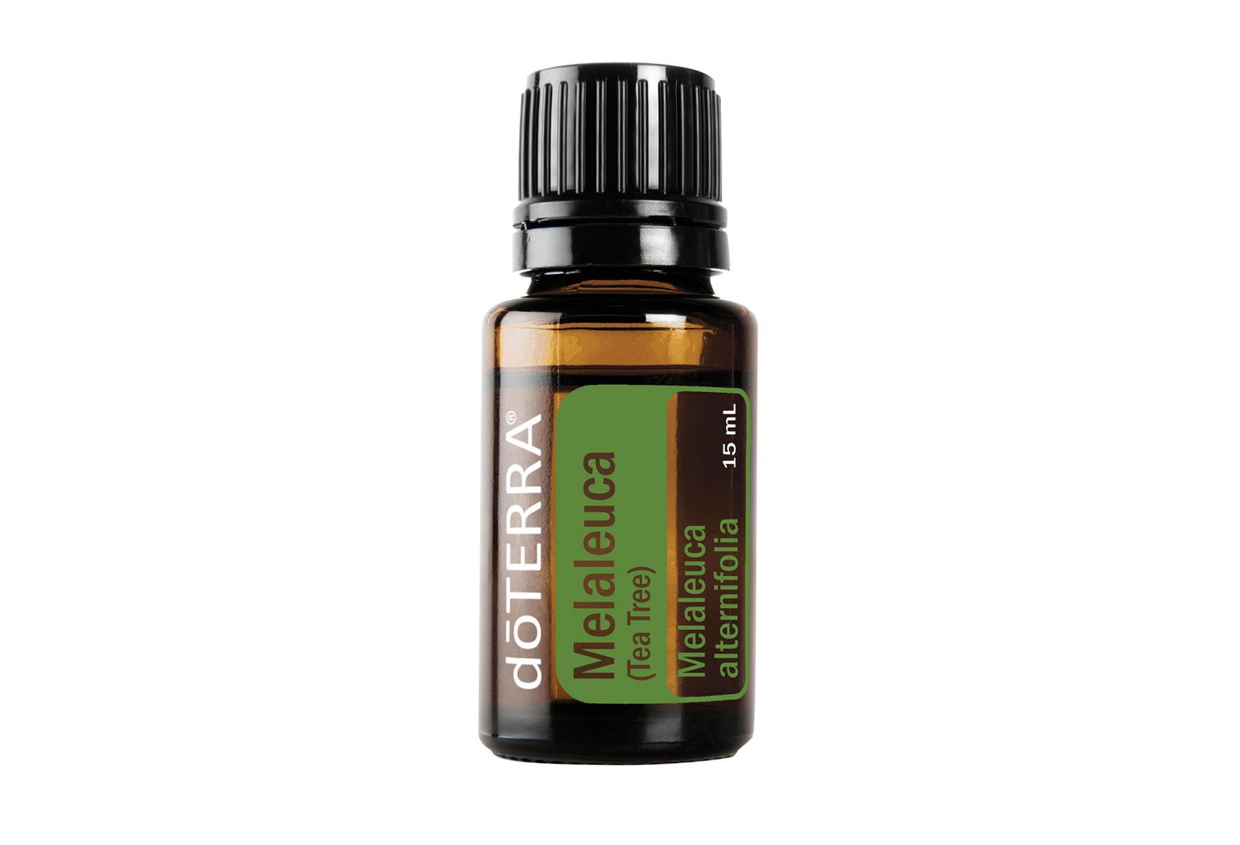 Essentielles Öl Melaleuca Tea Tree / Teebaum Öl 15 ml